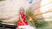 德国科隆举行传统南瓜节