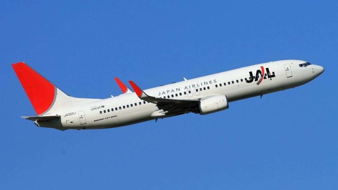 一架日航飞机起飞后因故障返回雅加达机场