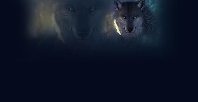 幼交狼�_野外一人行走时,突然遇到凶险的狼搭肩,怎么办?有一招