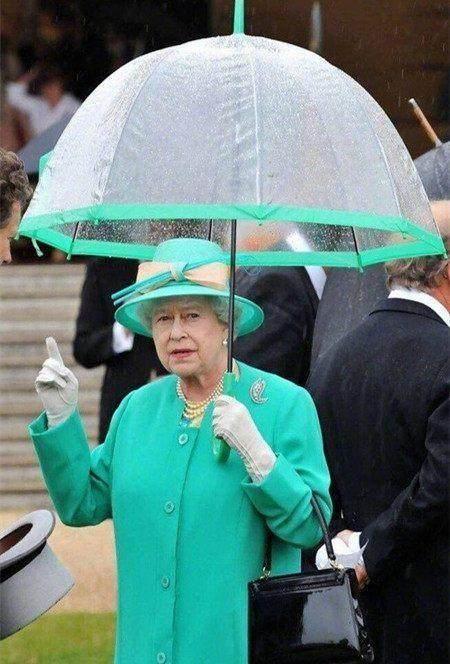 各国领导人下雨佩服:普京硬汉用递内裤大佬给表情包茶让人遇到,特朗普