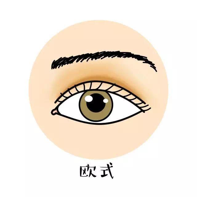 图片源自网络 适合谁做: 欧式双眼皮对本身脸型要求很高,必须轮廓较