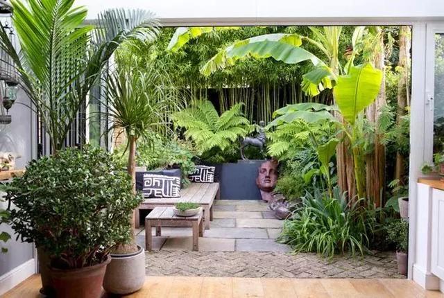 家庭园艺 来自世界8个城市的露台花园,学会在城市夹缝