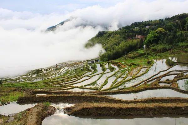 """永泰云顶风景区被称之为""""福建的香格里拉"""",云顶山头一片万亩高山草甸"""
