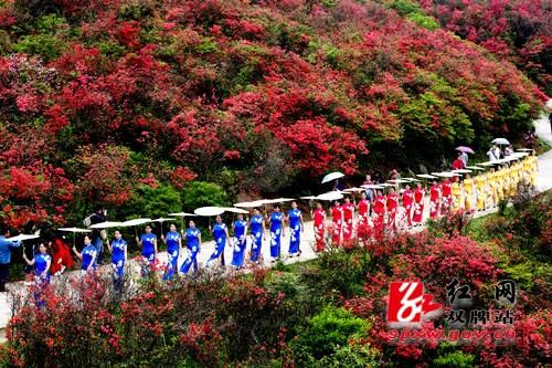 近百名身着旗袍的女性齐聚双牌阳明山,成为一道靓丽的风景线.