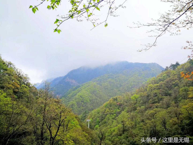 安徽六安天堂寨风景区,华东最后一片原始森林