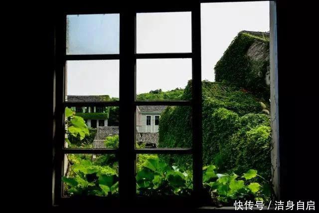 坐在窗邊,望向窗外的風景,便會覺得悠然自得,歲月靜好.