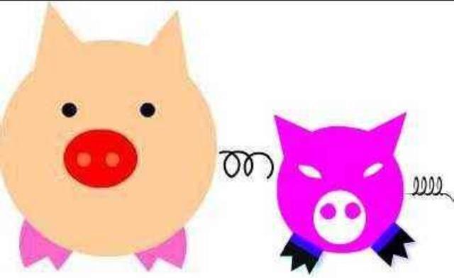 猪的计算公式(开心就好)