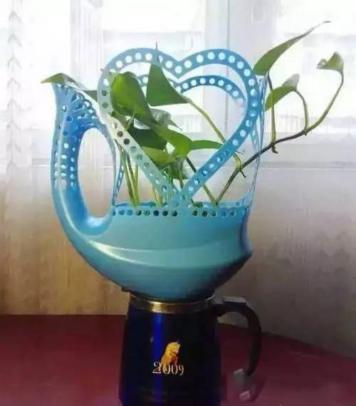 牛奶饮料盒,椰子壳3 鱼缸玻璃花盆4 自动吸水的花盆5 洗衣液瓶变花盆6