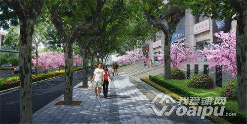 增加人行道树池带,花坛.图片