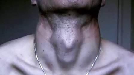 喉结 矢量图素材