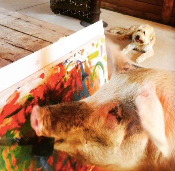 它被主人从猪圈救出来后开始画画,一张画卖3000镑,,猪