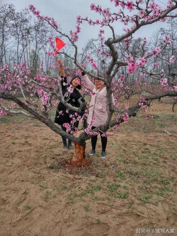 春天风景美景色很迷人,小朋友走进大自然看桃花放飞梦想