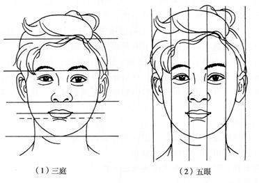 人物头像的绘画技巧和步骤