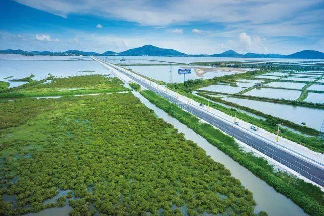 """阳江有条全球最长滨海公路段提前曝光!即刻去""""逻逻"""