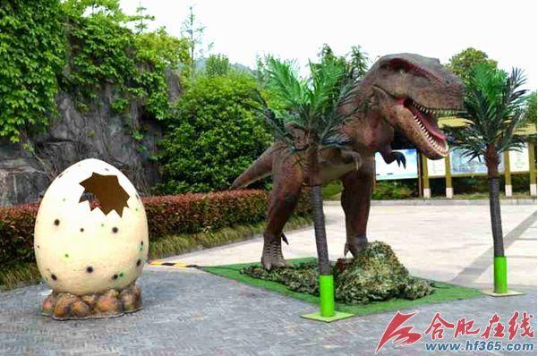 """""""五一""""去合肥野生动物园看""""恐龙总动员""""-北京时间"""