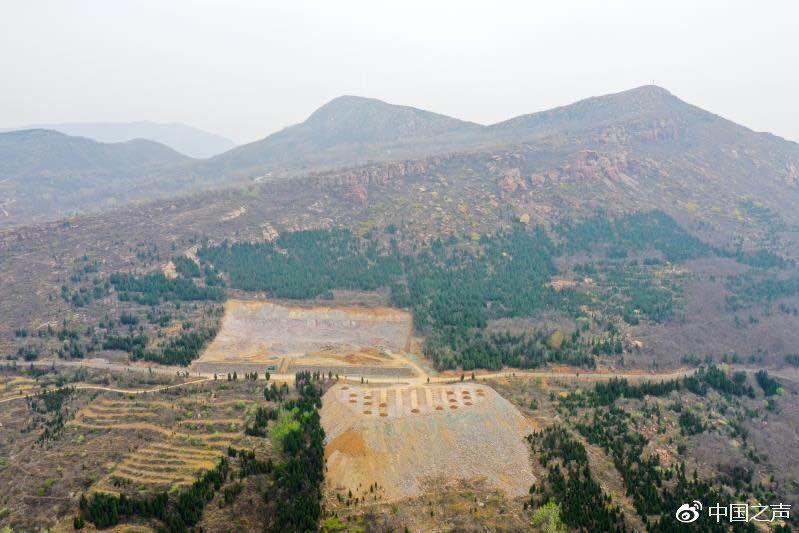 河南一村庄为搞旅游违建停车场 上万平方林木被毁