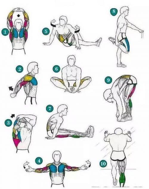 如何做好跑步后的拉伸运动?