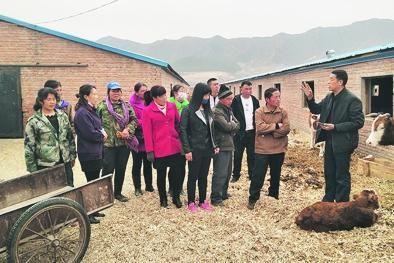 农民工创业项目_承德市:农民工就业创业政府撑腰