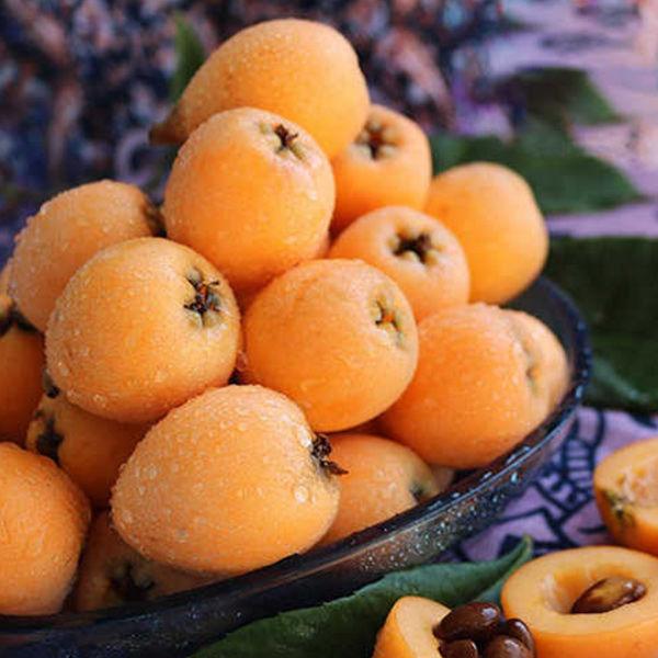 攀枝花米易枇杷 新鲜水果包邮3斤甜琵琶果果实鲜食甘酸可口,沁人心脾图片