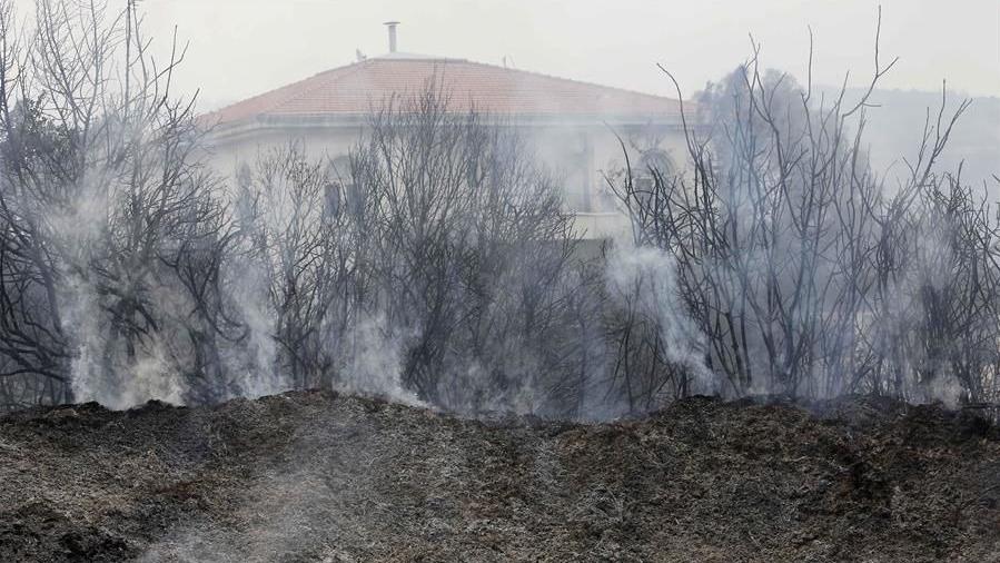 黎巴嫩突发山林大火