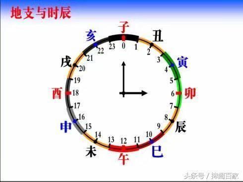 四柱 八字(5)十二地支以及代表的月份时辰 生肖和对应图片