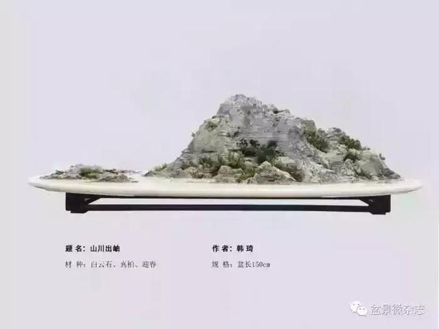 韩琦的山水盆景作品欣赏 心中春意浓 气韵自生情
