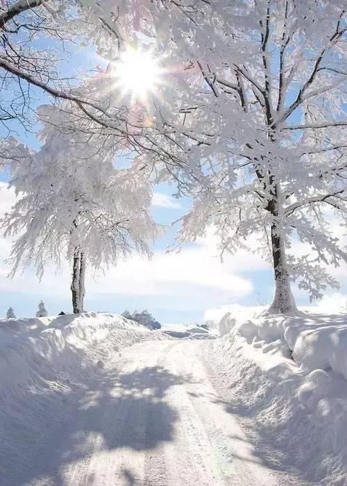 生命于我们,像春天的风,润暖;像夏日的阳,火热;像秋日的果,丰硕;像