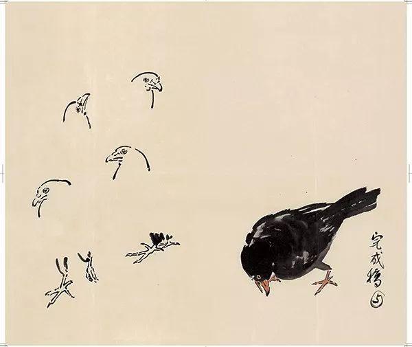 向徐悲鸿学画禽鸟徐悲鸿国画禽鸟画法步骤图