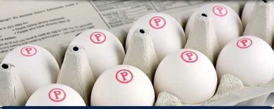 每天早上喝一碗葡萄冲鸡蛋,拌营养有大人?说白糖糖粉分小孩开水的吗图片