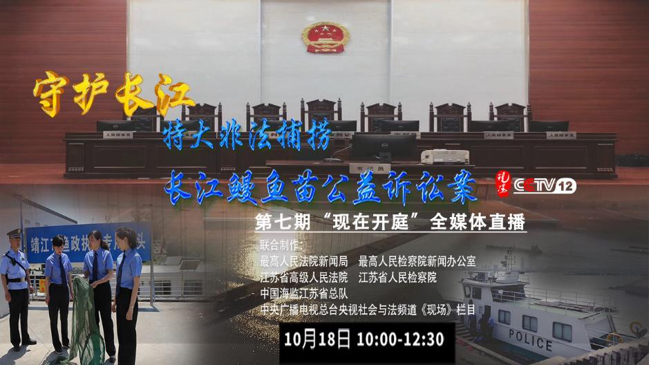 特大非法捕捞长江鳗鱼苗公益诉讼案开庭: 案金额高达1400余万元