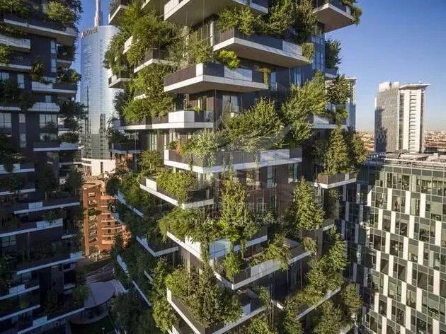 """到了冬天,""""垂直森林""""建筑上的树木叶子掉光后,光秃的树木也不会影响"""