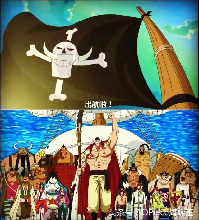 都知道白胡子是《海贼王》中最强的男人,而旗下的白胡子海贼团自然