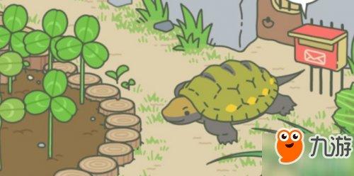 《v蜜蜂蜜蜂》蜗牛食物青蛙激励乌龟客人佛罗伦斯喜欢通关游戏图片