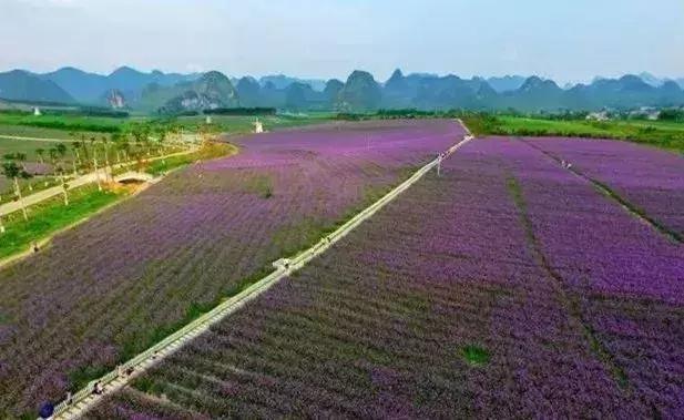 忻城:我没去过桂林,因为我家门口就是桂林!