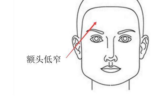 额头长旋的位置图解