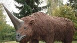 盘点五种怪异的史前生物,有的至今仍存活在地球上