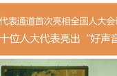 """【两会图话】代表通道首次亮相 十位人大代表亮出""""好声音"""""""