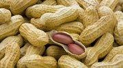 糖尿病人注意:这7种坚果,你可以放心吃,准没事!