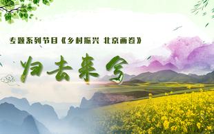 《乡村振兴 北京画卷》归去来兮