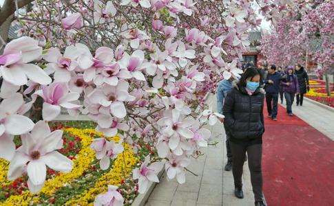 八宝山革命公墓公众开放日:深化殡葬改革 推进节地生态安葬