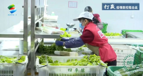 四季绿农业蔬菜送一线 心系疫情稳定市场
