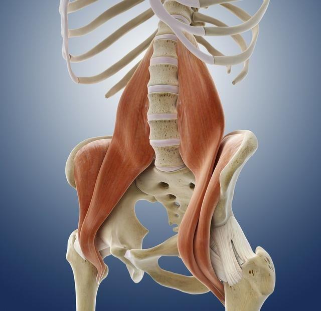 髂腰肌的拉伸方法