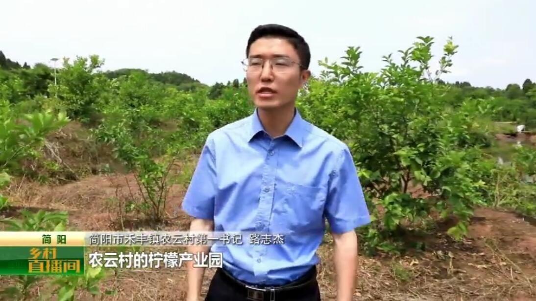 亲上阵!力推介!四川简阳禾丰镇第一书记来为乡村代言!