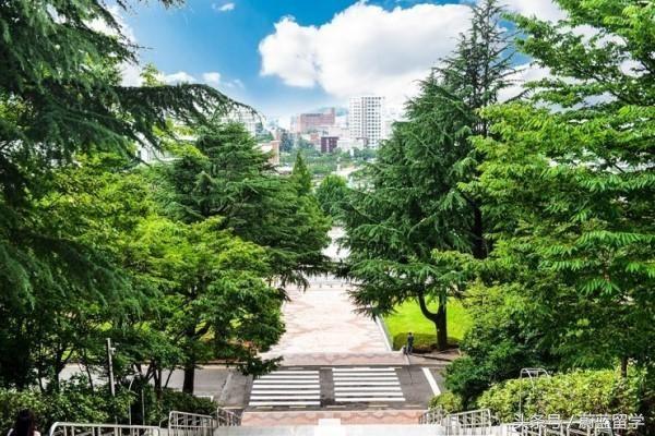 自己DIY申请和找韩国留学中介申请各有什么利