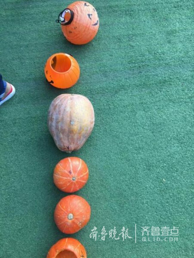 澳门威尼斯人赌场开户:万圣节幼儿园让带南瓜_又一个孩子被妈坑了