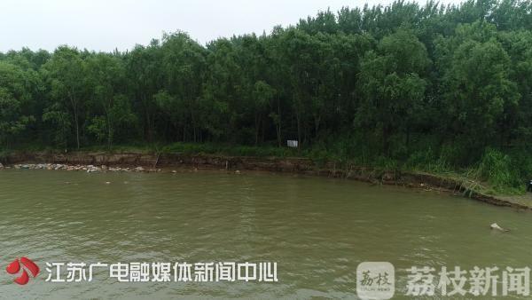 """南京江堤1公里范围内都要""""绿起来"""""""