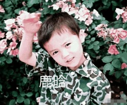不看名字的话你知道照片里的小孩是朱一龙邓伦和胡一天吗?_七星