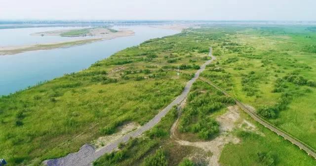广东地质学会黄河沿线科考团考察孟津湿地