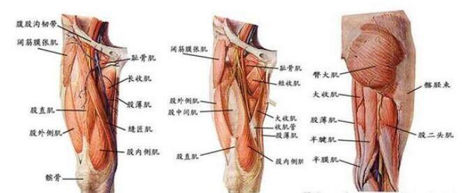强化大腿肌肉考验毅力和耐力的运动,没几个人