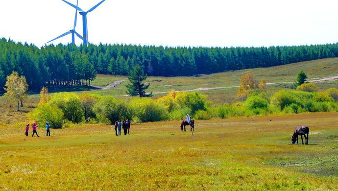 理想照耀中国│塞罕坝:美丽高岭上的绿色奇迹